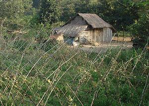 Thatched cottage Viet Nam