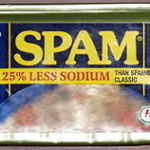 My blog ages, the spam retreats…